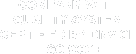 ins iso 9001 bw